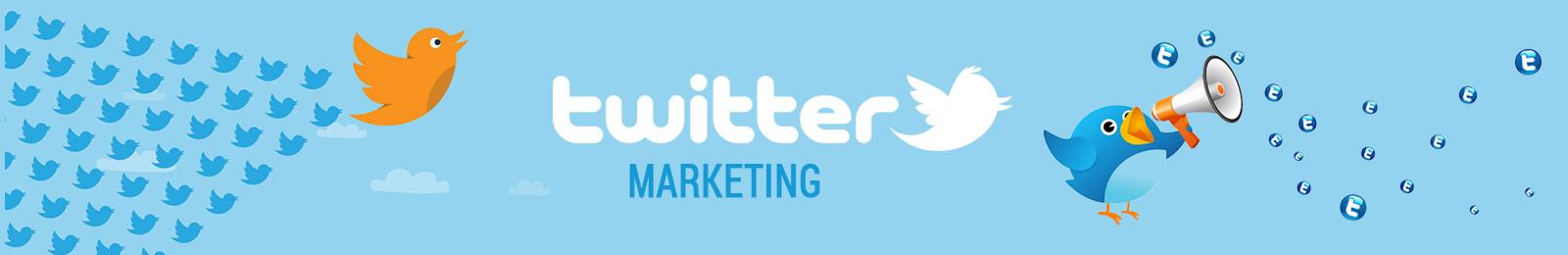 twitter marketing course training institute proideators
