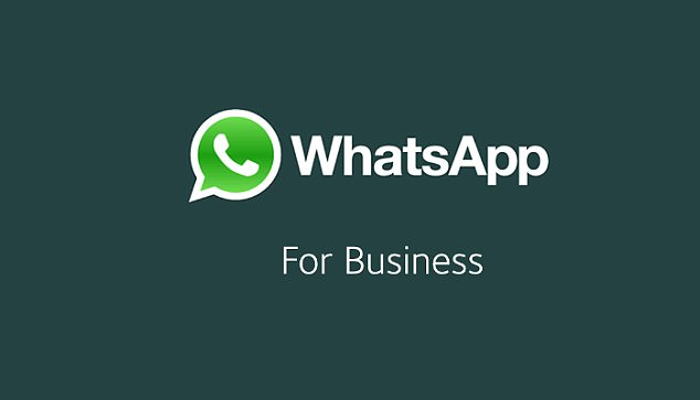 Whatsapp business for Proideators Digital marketing Institute